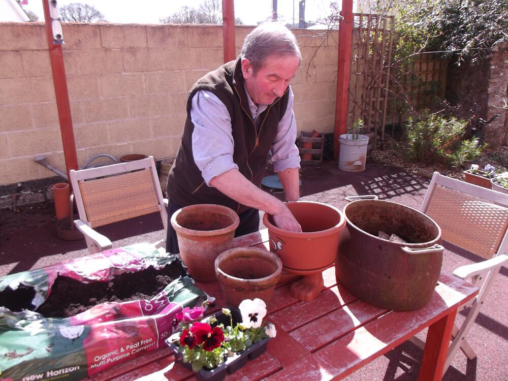 Camelot Gardening - Camelot Care, Somerset